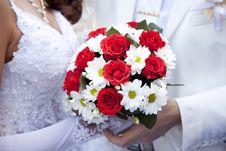 Bridegroom Keeping Bride Hand Stock Photography