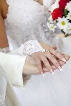 Bridegroom Keeping Bride Hand Royalty Free Stock Photo