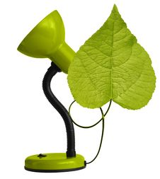 Free Green Desk-lamp With Leaf Royalty Free Stock Photo - 15826125