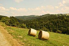 Free Harvest Season Royalty Free Stock Images - 15828339