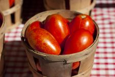 Free Tomatoes Royalty Free Stock Image - 15838396