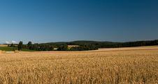 Free Landscape Stock Image - 15839191