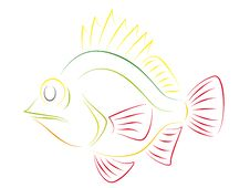 Free Colorful Fish Royalty Free Stock Photos - 15839228