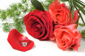 Free Roses And Diamond Royalty Free Stock Image - 15849536