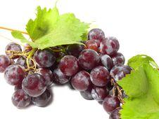 Free Grapes Royalty Free Stock Photo - 15843055