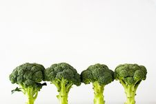 Free Fresh Sprouting Broccoli Stock Image - 15844351