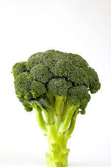 Fresh Sprouting Broccoli Stock Photos