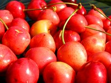 Free Cherries Background Stock Photos - 15846683