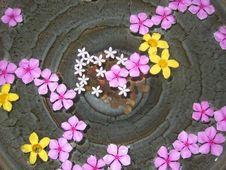 Free Tropical Wishing Well Stock Image - 15847381