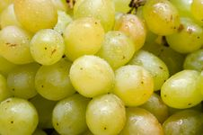 Free Green Grapes Stock Images - 15847664