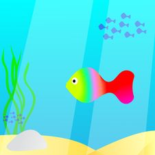 Free Fishes Swimming In The Sea Stock Photo - 15848060