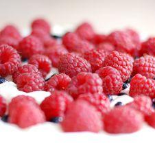 Free Raspberry Cake. Royalty Free Stock Photo - 15848325