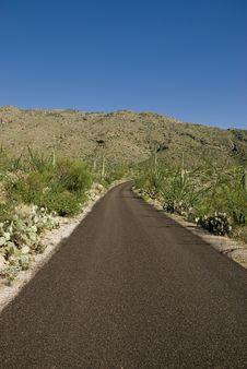 Free A Lone Road Through The Desert Stock Images - 15849664