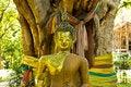 Free Budda Statue Stock Images - 15854194