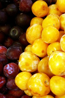 Fresh Summer Fruits, Plums Stock Photo