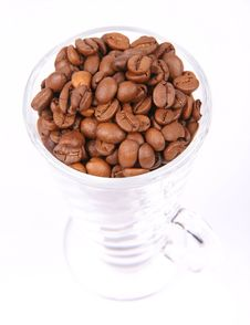 Free Coffee Beans Stock Images - 15851194