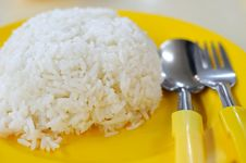 Free Mealtime With White Rice Royalty Free Stock Photo - 15851405