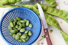 Free Thai Vegetable Preparation Royalty Free Stock Photo - 15851825