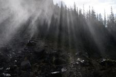 Free Misty Forest Stock Image - 15853491