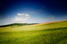 Free Fine Summer Landscape. Royalty Free Stock Photos - 15853958