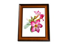 Free Pink Flower On Wooden Frame Royalty Free Stock Photo - 15860355