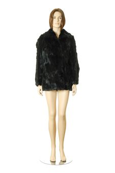 Short Fur Coat | Isolated Royalty Free Stock Images