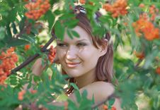Free Beautiful Girl In The Forest With Mountain Ash Stock Photography - 15862012
