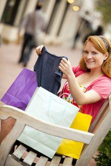 Free Woman Shopping Stock Photo - 15862480