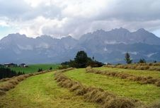 Free Mowing On The Alpine Meadows Royalty Free Stock Images - 15862679