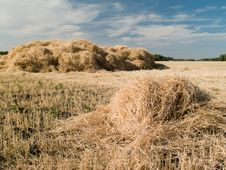 Free Haystack Royalty Free Stock Photo - 15867155