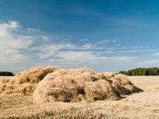 Free Haystack Stock Images - 15867164
