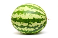 Free Watermelon Stock Photo - 15867810