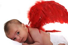 Free Baby Smiling And Wearing Red Angle Wings Stock Photography - 15869002