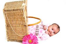 Free Newborn Baby Girl In A Basket, Beads And Flower Royalty Free Stock Image - 15869026