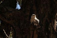 Free ️ EXploration | West Coast {USA} 🌌 City/Nature Stock Photos - 158650293