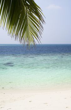 Free Maldives. Indian Ocean. Royalty Free Stock Photography - 15872897
