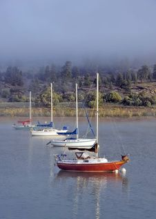 Sailboats In Early Morning Fog Stock Photography