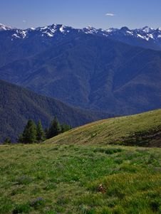 Free Mountain Landscape And Greem Meadow Stock Photography - 15873682