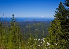 A Bay View From Mountains Stock Photos