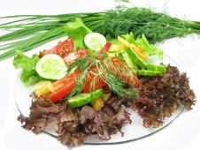 Free Vegetable Salad Stock Images - 15875174