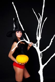 Free Witch With A Pumpkin Stock Photography - 15876192