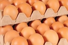 Free Eggs. Royalty Free Stock Image - 15876576
