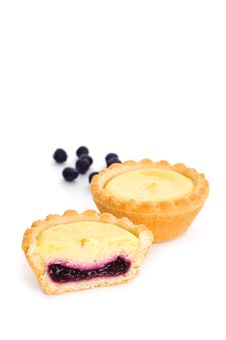 Blueberry Tarts Stock Images