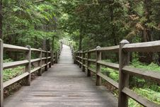 Free Boardwalk In The Park Stock Image - 15877461