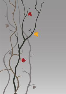 Free Autumn Stock Image - 15877611