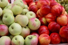 Free Fresh Apples And Nectarines Stock Images - 15879504