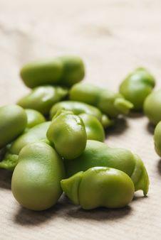 Free Peas Stock Image - 15880241