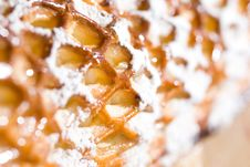 Free Close Up Picture Of Dessert Royalty Free Stock Photos - 15880758