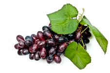 Free Grape With Leaves Royalty Free Stock Images - 15881439