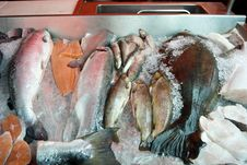 Free Fish On Ice Counter In Market Royalty Free Stock Image - 15883976